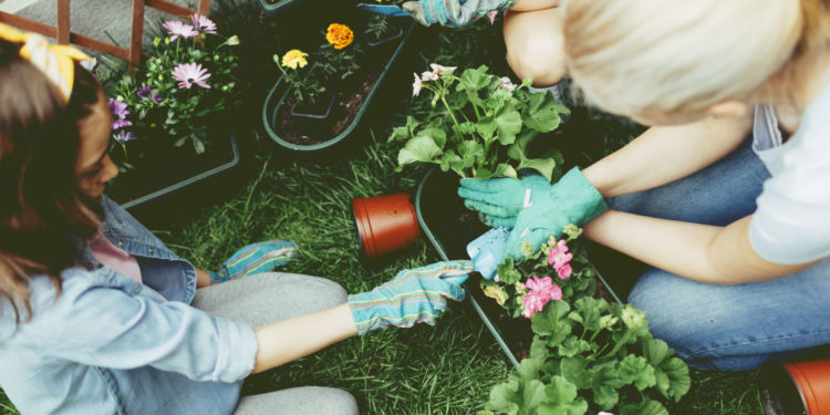 Gables Montessori School   GARDENING, A HEALTHY THERAPY FOR ACTIVE KIDS